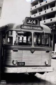 Vidas e Ônibus
